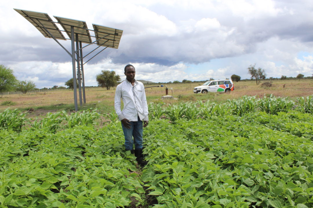 Solar Irrigation Sustainable Farming In Africa